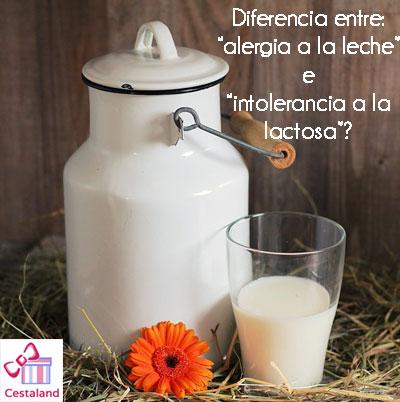 diferencia entre alergia a la leche e intolerancia ala lactosa