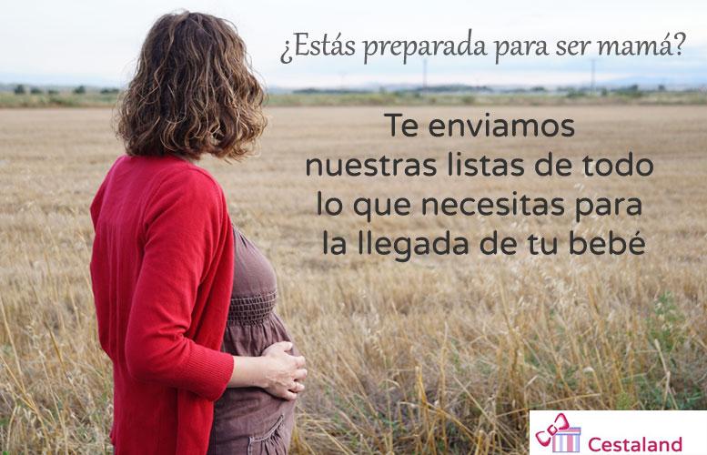 listas-embarazada-sumome
