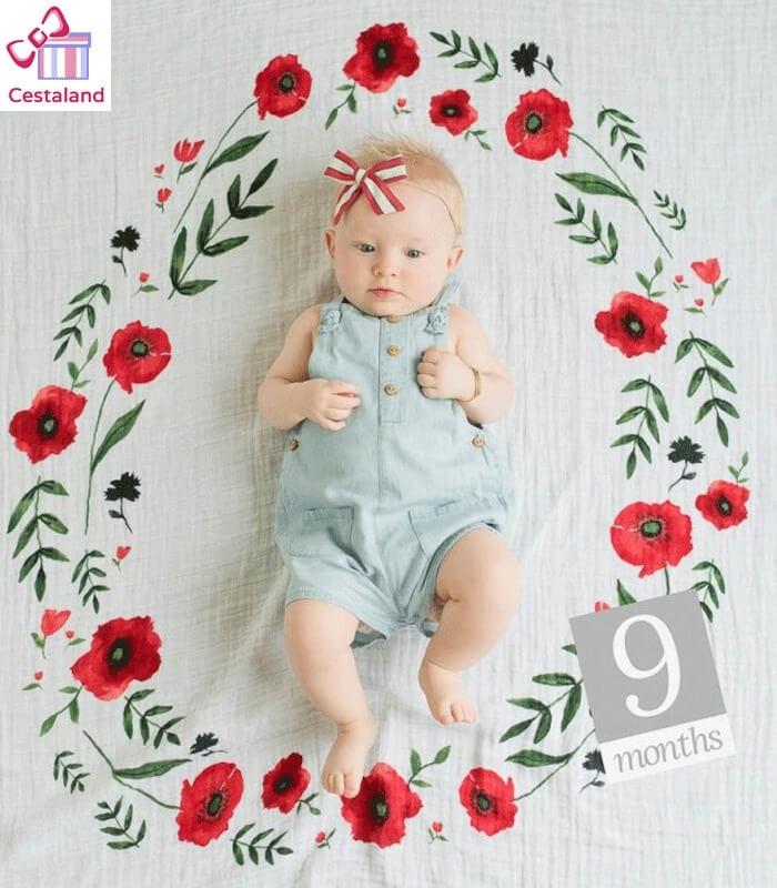 Muselina Manta para fotos del bebé Boppy